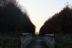 Road to ......... (BernardusM) Tags: eveningsun bridge autumn drenthe november