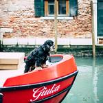 Capitano Giulia thumbnail