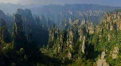 View from Tianzishan, Zhangjiajie National Forest Park (Mark Tindale) Tags: avatar geological landform terrain mountainous rugged peaks scenery mountains lookout view china rock geology 张家界 中国 湖南 hunan zhangjiajie nationalpark park nature karst unesco worldheritage forest