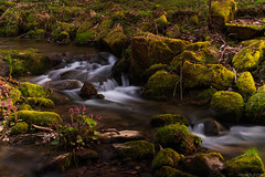 Bachlauf am Nachmittag (Jonbene) Tags: klusteich niedersachsen saxony river hannmünden lower nikon landscape d3400