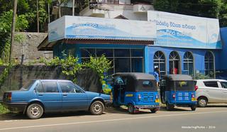 All blue - Bandarawela Sri Lanka