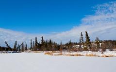 Looking across a lake (J.R. Rondeau) Tags: rondeau yellowknife nt inghamtrail snow trees canon1740f4 canoneos photoshopelements10
