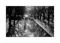 Paris (Punkrocker*) Tags: leica iiif ltm leitz summaron a36 35mm 3535 film kodak trix 400 nb bwfp street city people river tree canal saintmartin paris france