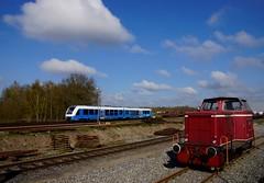 D12 ( 98 80 3262 011-0 D-BE Mak 240 B / 1956 / 220028 ) von Bentheimer Eisenbahn A.G. en op de achtergrond Lint 41 Bentheimer Eisenbahn VT 113 (95 80 1648 613-5 D-BE) in Betriebswerk Nordhorn 13-04-2019 (marcelwijers) Tags: d12 98 80 3262 0110 dbe mak 240 b 1956 220028 von bentheimer eisenbahn ag en op de achtergrond lint 41 vt 113 95 1648 6135 betriebswerk nordhorn 13042019 be d 613 alstom 41h triebwagen deutschland germany niedersachsen allemagne tren trenes trein train bahn sonderfahrt graf mec