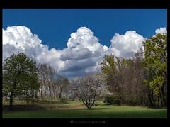 Springtime (iLaura_) Tags: springtime primavera panorama cielo nuvole alberi ciliegio prati luci ombre lightandshadows clouds sky green trees landscape