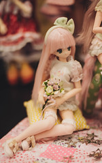_DSC2465 (meimej162) Tags: bjd bjdphoto bjddolls bjddoll bjdphotography balljointeddoll bjdgirl bjdboy bdmeet doll dolls
