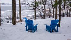 Winter - Parc du Bois-de-Coulonge,  Québec - Canada - 8829 (rivai56) Tags: winter parcduboisdecoulonge québec canada neige invitation à une pause sur les chaises bleues devant le fleuve saintlaurent break blue chairs front st lawrence river