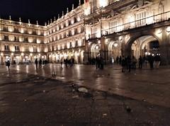 nochevieja 2018 plaza mayor portugueses (6)