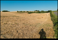 180711-8579-XM1.JPG (hopeless128) Tags: 2018 fields me self shadiow strawbales france haybales verteuilsurcharente charente fr