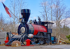Number 20 (dr.tspencer) Tags: train albanycounty rensselaerville prestonhollow