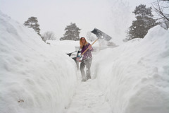 Canadian Workout (flashfix) Tags: february132019 2019inphotos easternontario ottawa ontario canada nikond7100 28mm snow shovel shovelling winter mittens portrait selfportrait snowmaggedon allthesnow path walkway selfie