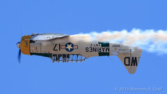 "John Collver in the North American SNJ-5 ""War Dog"" (Norman Graf) Tags: aircraft flight war dog airplane 2017mcasmiramarairshow invertedflight johncollver smoke aerobatics snj5 airshow snj northamerican wardog 90917 at6 harvard marines n1038a plane texan trainer vmt2 wd wd17 wwii warbird"