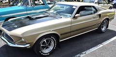 Mach 1 (thomasgorman1) Tags: car mustang auto automobile classic 1969 mach1 nikon pennsylvania street streetphotos show ford cobrajet
