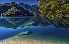 Chiaroscuro (giannipiras555) Tags: lago natura montagna riflesso albero landscape panorama paesaggio colori nikon