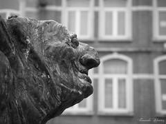 Paep Thoon (Fernando Álvarez Rodríguez) Tags: olympusomd photowalk phototravel photohistory streetphotography leuven belgium
