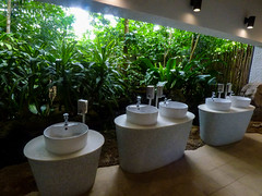 The Toilet Block (Steve Taylor (Photography)) Tags: basin washroom toilet jungle tiles zoo architecture green brown white asia singapore bush plant leaves sink