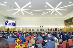 12173s0016 (FAO News) Tags: council italy europe faocouncil161tstsession rome