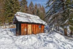 Cabane au soleil (gerardcarron) Tags: arbres cabane canon80d cloud foret forest hdr massifbauges savoie