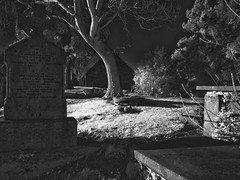 Tombstones (nl042) Tags: church churchyard tomb tombstones ir infrared kilgobbin dublin ruin eerie trees graveyard