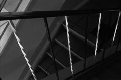 Handrail (Pics from the Bird Cage) Tags: argentique leica leicaiiic hp5 film ilfordhp5plus400 35mm alberta ishootfilm leica3c ilfordhp5plus ilfosol3 edmonton edmontonalberta blackandwhite blackwhite summitar summitar5cmf20 barnack whyteavenue analog analogue bulkfilm classiccamera camera monochrome iso iso400