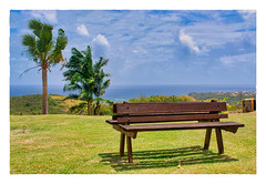 Two Sided (Timothy Valentine) Tags: 2018 0418 bench vacation monday caribbean sky shadow codringtoncollege m palm sargeantstreet saintjohn barbados bb
