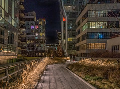 Cold and almost empty Highline at night (Jeffrey Friedkin) Tags: jeffreyfriedkinphotography architecture buildings cityscene cityscape city evening highline manhattan newyork nyc newyorkphoto streetscene street z