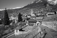 Leuk, Valais (Toni_V) Tags: m2400539 rangefinder digitalrangefinder messsucher leica leicam mp typ240 type240 28mm elmaritm12828asph hiking wanderung randonnée escursione sierreturtmann leuk wallis valais switzerland schweiz suisse svizzera svizra europe blackwhite monochrome schwarzweiss bw alps alpen landscape landschaft frühling spring ©toniv 2019 190330