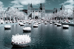 Tulip festival, amsterdam. (PeteMartin) Tags: architecture colour festival flowers infrared museum pool tulips urban