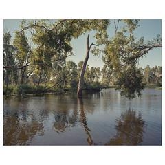 QFV-06 (sm0r0ms) Tags: mamiya7 6x7 kodak 120 film analog landscape mediumformat colorphotography newtopographics contemporarylandscape