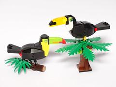 Birds of South America (LuisPG2015) Tags: tucánpicoarcoiris rainbowbilledtoucan tocotoucan tucán toucan lego