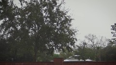 Droplets falling fron the roof (Ricardo's Photography (Thanks to all the fans!!!)) Tags: video b roll anthem park florida nature sony saintcloudfl centralflorida cinematic videolibrary freevideos 1080pvideos 1080p freefootage footage sonyvideos