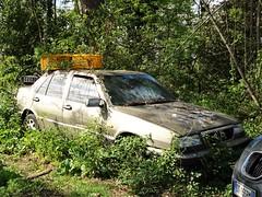 Lancia Thema (Alessio3373) Tags: abandoned abandonment abandonedcars autoabbandonate unused unloved neglected forgotten forgottencars autoshite junkcars urbex ruraldecay decay decayed lancia thema lanciathema