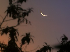 Crescent Moon at dusk (PsJeremy) Tags: crescent nightsky dusk