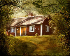 Embedded (BirgittaSjostedt- away for a while.) Tags: cottage house red old traditional forest garden nature leaves grass texture paint creation
