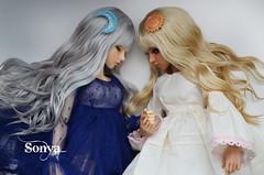 DSC_2073 (sonya_wig) Tags: fairytreewigs wig bjdwig minifeewig bjd bjdminifee handmadedoll bjddoll dollphoto fairyland fairylandminifee minifee bjdphotography coloringhair