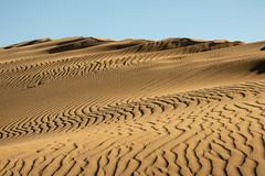 Curves (s_andreja) Tags: spain grancanaria dunas dunes desert maspalomas playa sand