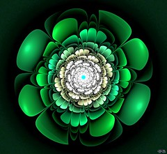 f000100_big_33693358808_o (peter.barlow5) Tags: deepstyle fractal apophysis userfrax flower