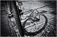 Fotografía Estenopeica (Pinhole Photography) (Black and White Fine Art) Tags: fotografiaestenopeica pinholephotography camerawithoutalens camarasinlente pinhole estenopo estenopeica stenopeika sténopé aristaedu100 kodakd76 sombra shadow bicicleta bicycle sanjuan oldsanjuan viejosanjuan puertorico bn bw