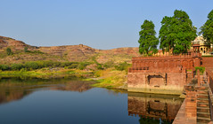 Balsamand Lake in Jodhpur, India (phuong.sg@gmail.com) Tags: asia asian beautiful bird blue bright cloud colorful delta ecology environment forest grass green horizon idyllic lake landscape leaf mirror mountain natural nature outdoor park plitvice pond rajasthan reflect reflection river rock scenery sky stone summer sunlight sunny tourism travel tree vibrant vietnam view water