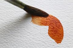 Macro Mondays : Hobby (erichudson78) Tags: canonef100mmf28lmacroisusm macro macromondays hobby canoneos6d painting peinture aquarelle watercolor texture pinceau paintbrush brown brun