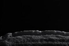 Monochrome. (ALEKSANDR RYBAK) Tags: изображения монохромный снег зима сезон мороз images monochrome snow winter season frost