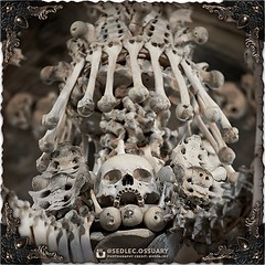 At the very center of the chandelier, concentric skulls and other various bones make up the bowl of the chandelier. (To be continued...) . 💀 Sign up on our mailing list for exciting special announcements! 💀 ☩ sedlecossuary.mechanicalwhispers.c (Sedlec Ossuary Project) Tags: sedlecossuaryproject sedlec ossuary project sedlecossuary kostnice kutnahora kutna hora prague czechrepublic czech republic czechia churchofbones church bones skeleton skulls humanbones human mementomori memento mori creepy travel macabre death dark historical architecture historicpreservation historic preservation landmark explore unusual mechanicalwhispers mechanical whispers instagram ifttt