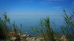 As Far As The Eye Can See... (monazimba) Tags: sea seascape camargue france blue land marsh nature wildlife water