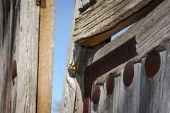 Rustical ancient door (Jose Rahona) Tags: puerta porton portalon door remaches adornos rivets madera wood metal hierro iron