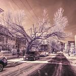 Snowy Commerce Street thumbnail