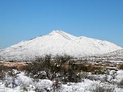 tonto-national-forest-1902230121 (nagerfran) Tags: cactus winter desert storm snow cold freeze arizona scottsdale tontonationalforest
