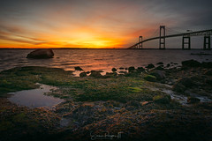 Modulated Mood (Simmie | Reagor - Simmulated.com) Tags: 2019 bridge claibornebridge claibornepellnewportbridge connecticutphotographer d750 dawn february landscapephotographer lowtide naturephotographer nikon peaceful rhodeisland sunrise taylorpointlookout winter digital narragansett narragansettbay rockybeach water