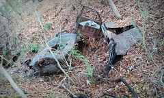 truly Forgotten (Dave* Seven One) Tags: pieces broken used dead rotted rot rust rusty abandoned forgotten overgrown woods forest trees car auto chrysler