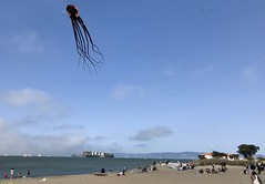 #SaturdayAfternoon in #SanFrancisco (Σταύρος) Tags: squidkite kite sanfrancisco thecity marinagreen saturdayafternoon marinadistrict sf city sfist санфранциско sãofrancisco saofrancisco サンフランシスコ 샌프란시스코 聖弗朗西斯科 سانفرانسيسكو kalifornien californië kalifornia καλιφόρνια カリフォルニア州 캘리포니아 주 cali californie california northerncalifornia カリフォルニア 加州 калифорния แคลิฟอร์เนีย norcal كاليفورنيا