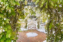 Romantic winter garden in the Finger Lakes (bee.pics) Tags: romantic greenery backdrop garden romance landscape season setting set winter fresh november foliage leaves nature naturelover photography photo inspiration snow scene scenery skaneateles new york state nys fingerlakes wine country green greens arch arches